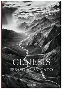 Genesis by Salgado